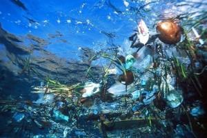 Dzień Ochrony Środowiska – Eco ALARM