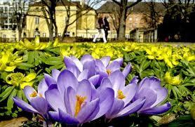 Wielkanocno-wiosenna refleksja