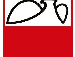 Komunikat dot. XVII Światowe Letnie Igrzyska Polonijne 2015