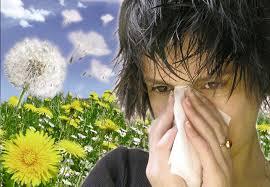 100 lat-zdrowie i uroda -Słońce świeci, pyłek leci!