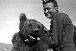 Wojtek nie był zwykłym niedźwiedziem. Wojtek był żołnierzem. Bardziej ludzkim niż niejeden człowiek