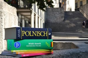 Język polski: przygotowanie do nauki czytania i pisania